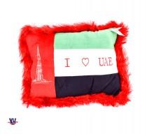 UAE Flag pillow
